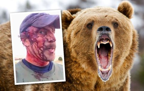Bear Attacks-Treks, Adventures, Safaris and Medeva